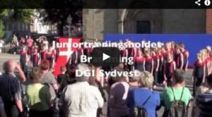 2013 DGI Sydvest Juniortræningsholdet Bramming